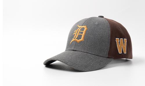 2019 Comerica Park hat
